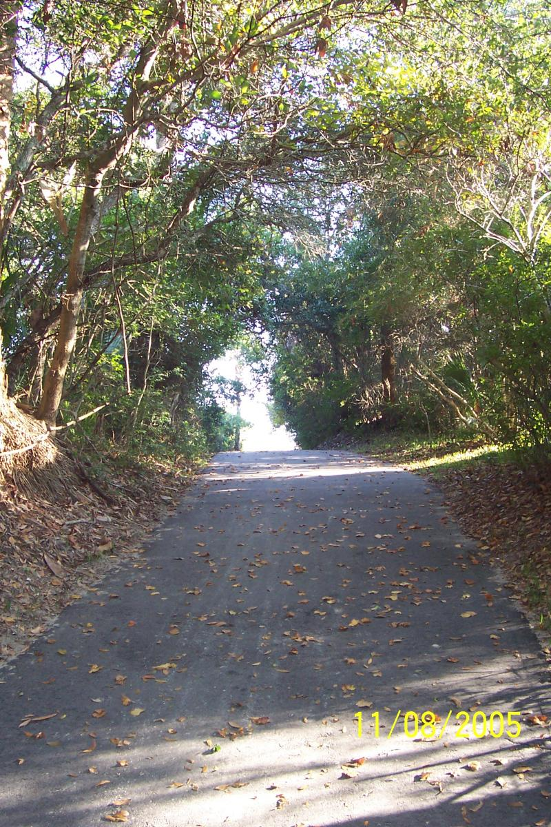 Bikes Kiawah Path to the beach